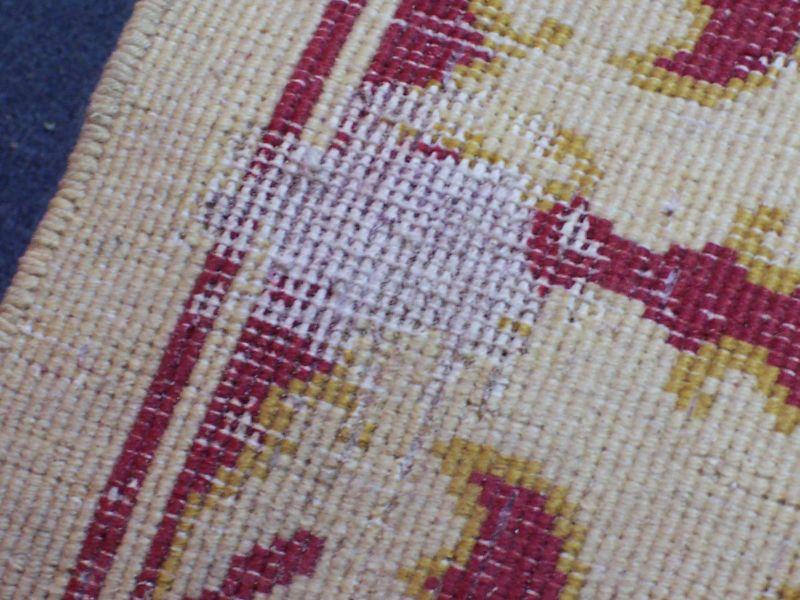 Bekannt Motten im Teppich   Was tun ? Erste Hilfe   Teppichreinigung Vorwerk LN78