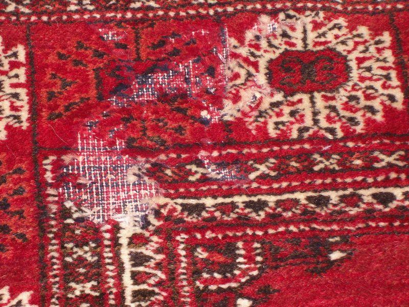 Extrem Motten im Teppich   Was tun ? Erste Hilfe   Teppichreinigung Vorwerk GO04